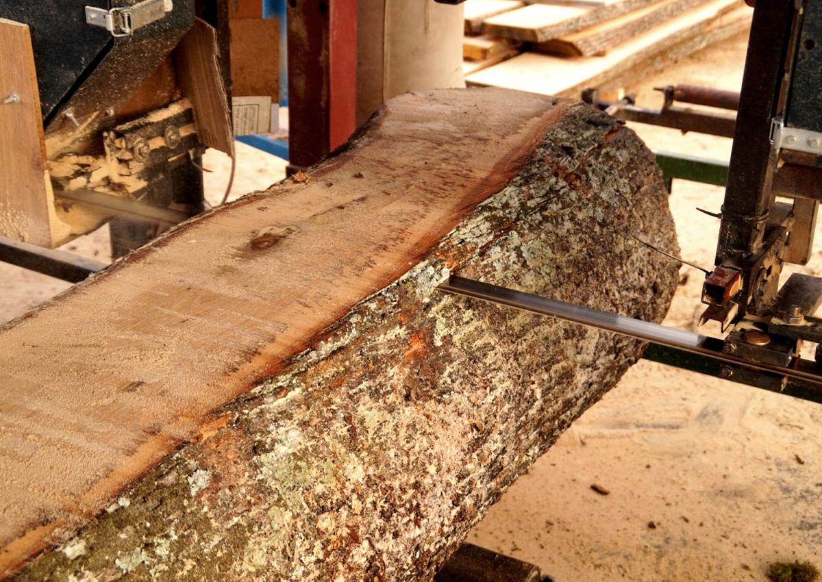 fa bérfűrészelés